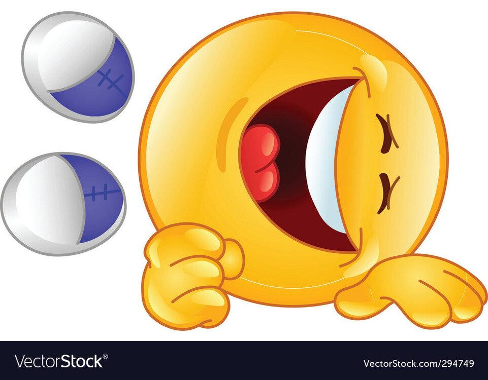 laughing-emoticon-vector-294749.jpg